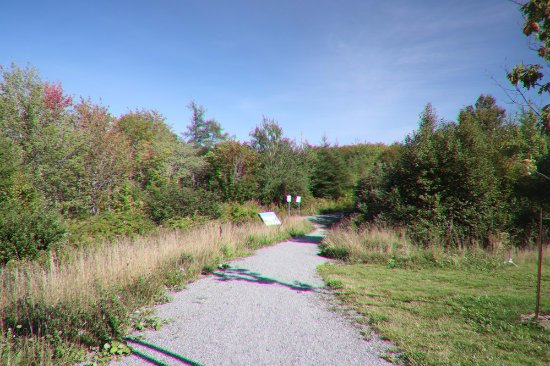 Greenlink Rotary Park Trail System