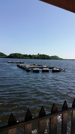 El Viejo, Nicaragua: Cultivo de peces
