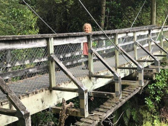 Wairoa, Nova Zelândia: One of many suspension bridges