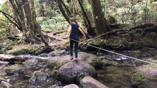 Wairoa, Nova Zelândia: River crossing up to Korokoro Falls