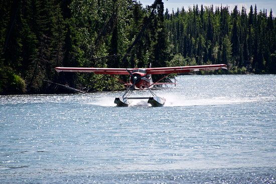 Sterling, AK: Floatplane arriving to pick up guests for trip back to Anchorage