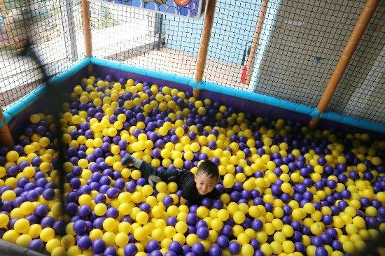 Chipmunks Playland