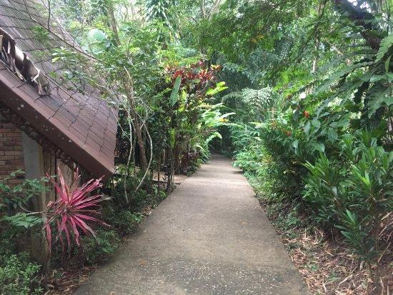 Khao Sok Las Orquideas Resort: photo1.jpg