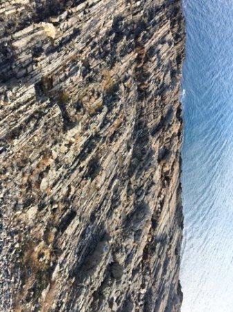 Cape Neddick Resmi