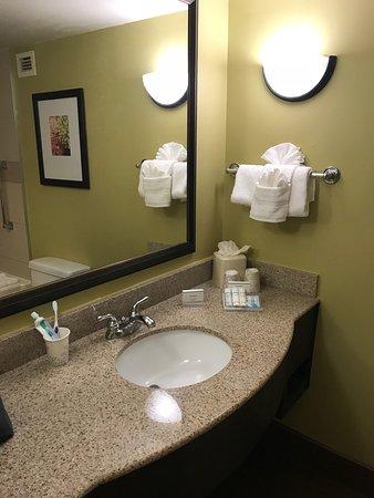 Hilton Garden Inn Tampa East/Brandon: photo3.jpg