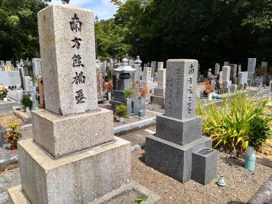 Minakata Kumakusu's Grave