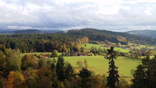 Baumwipfelpfad Bayerischer Wald: Bavarian Forest