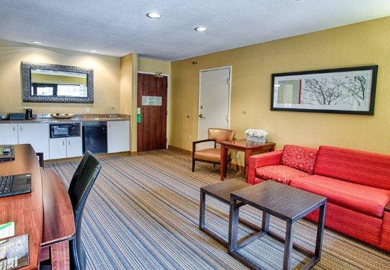 Moorhead, MN: One-Bedroom King Suite - Living Room