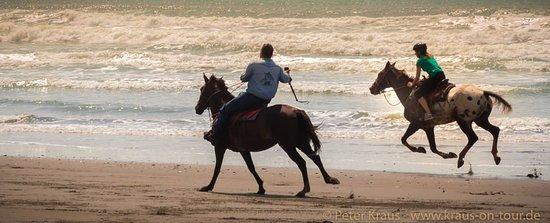 Esterillos Este, Costa Rica: pictures taken while riding!