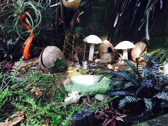 Mitchell Park Horticultural Conservatory (The Domes): Tropical Dome 25 September 2017