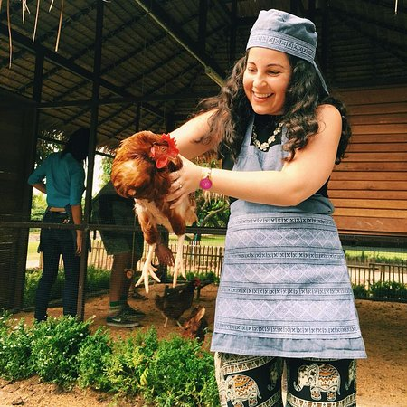 Saraphi, Tailandia: Meeting the chickens!