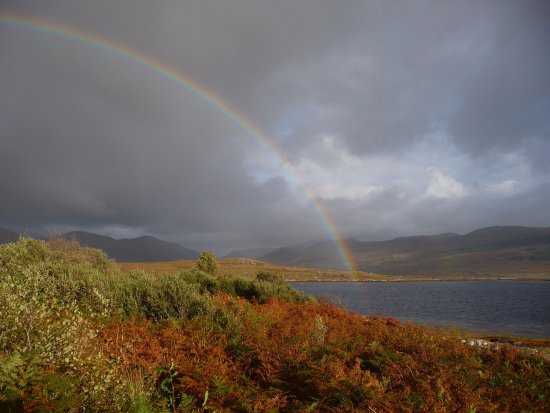 Island Encounters: Rainbow's end