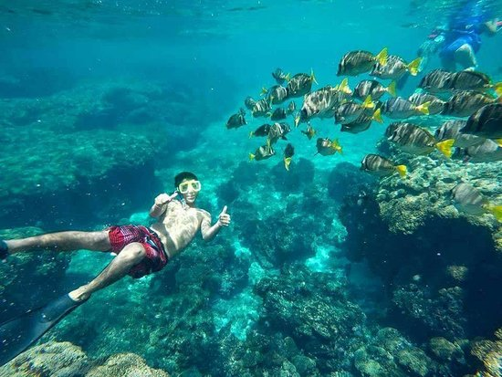 Fishing with Pulpo: snorkel