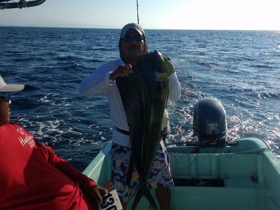 Fishing with Pulpo: goldfish
