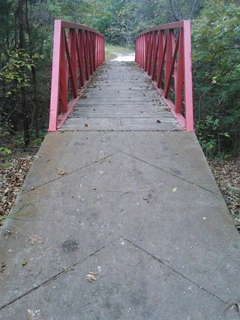 Windmill Hill Nature Preserve: Symmetry of the bridge