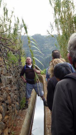 Madeira Happy Tours - Day Excursions: Levada walk
