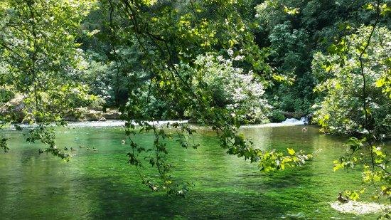 Fontaine de Vaucluse, Frankrike: 20170721_142253_large.jpg