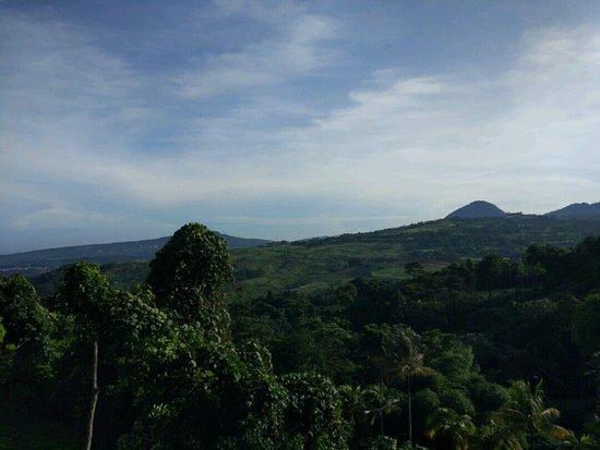 Royal Tulip Gunung Geulis Resort and Golf: suasana pegunungan