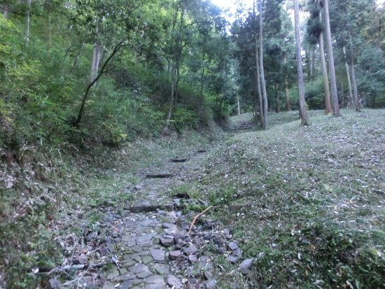 Akechi Nagayama Castle Ruins: 本丸への登城道