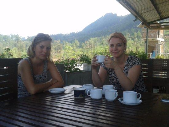 Lanka Inora Travels: have a Cup of Sri lankan Black Tea !! visit tea plantation & tea factory.