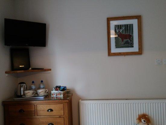 White Cottage B&B: Woodland room