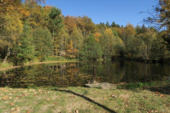 Kamenice nad Lipou, Czech Republic: photo0.jpg