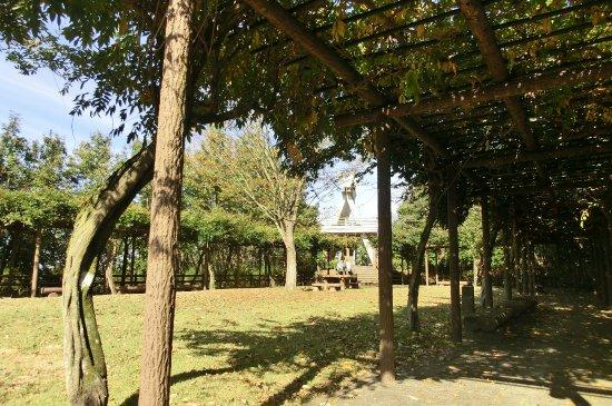 Mitake Castle Ruins Park: 山上公園