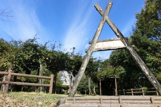 Mitake Castle Ruins Park: 山上の城址は公園になっている