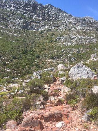 Gordon's Bay, Güney Afrika: photo2.jpg