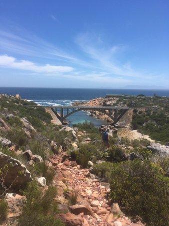 Gordon's Bay, Güney Afrika: photo3.jpg