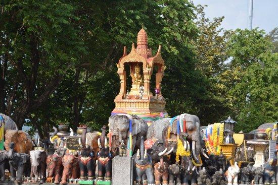 ราไวย์, ไทย: elephants everywhere