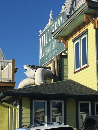 Miller's Seawall Grill: Wild sharknado between duct work on Victorian building.