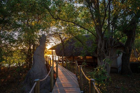 Linyanti Reserve, Botswana: Savuti Camp