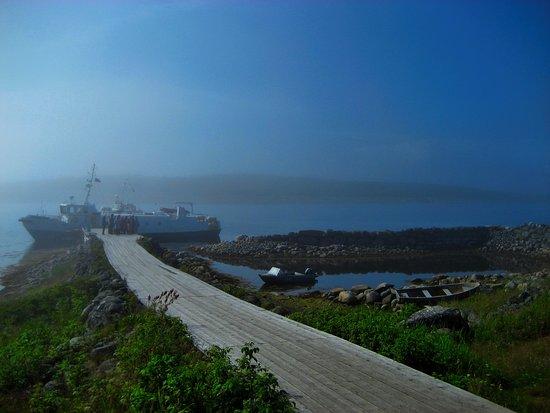Bilde fra Bolshoi Zayatsky Island