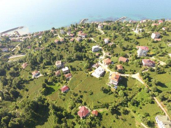 Rize Province, تركيا: iyidere sarayköy mahallesi