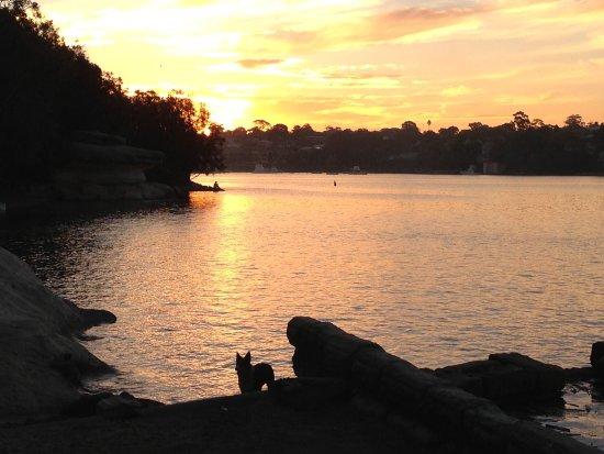 Sunset at Rozelle bay