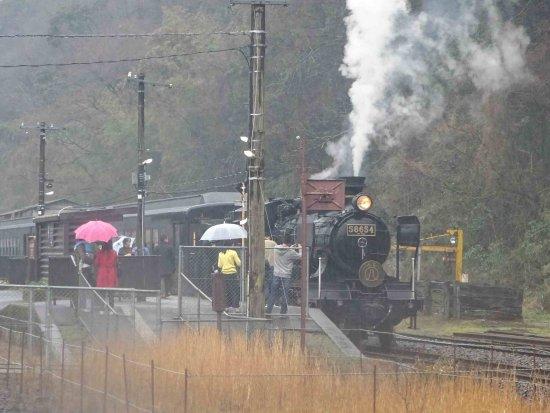 Bilde fra Kumamoto Prefecture