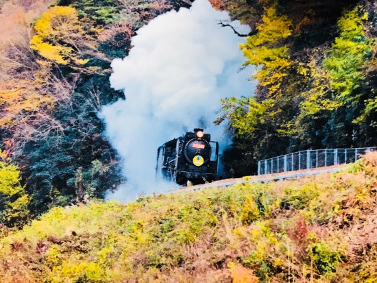 Τσουγκόκου, Ιαπωνία: D51