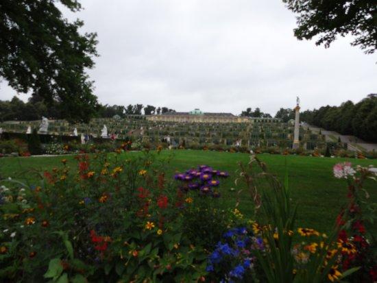 Parque Sanssouci: サンスーシ公園 (ドイツ ポツダム)