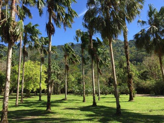 Wang Takrai Park