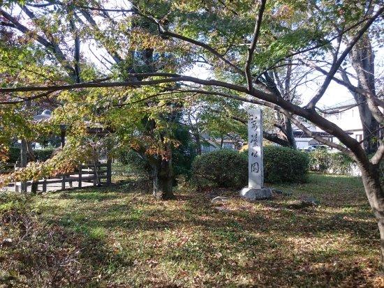 Ichinomiya, Japón: 河津桜の名所