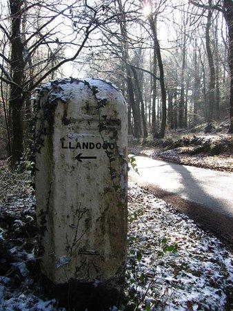 To LLandogo