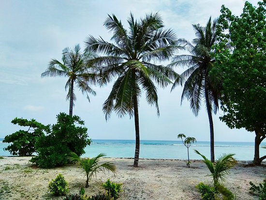 Kaafu Atoll: IMG_20171129_122723_large.jpg