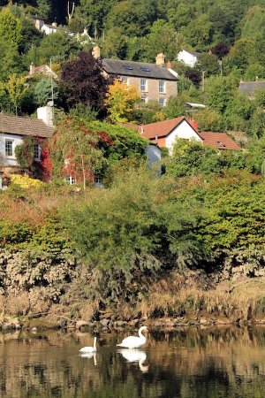 Llandogo, UK : View of Ty Bryn from the River Wye