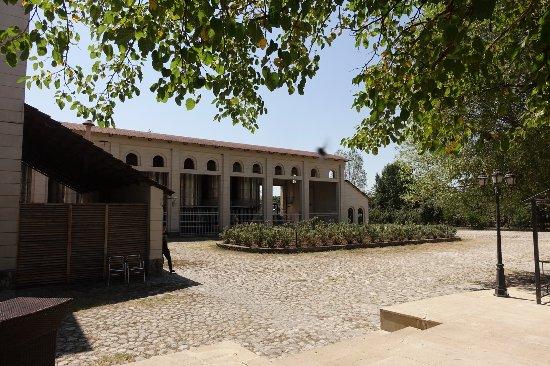 Ikinci Yeniyol, Aserbajdsjan: vine factory on hotel ground