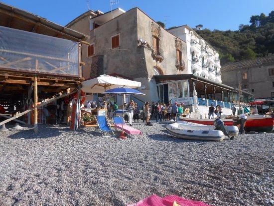 Hotel La Certosa: vista dalla spiaggia