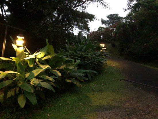 San Ramón, Costa Rica: photo4.jpg