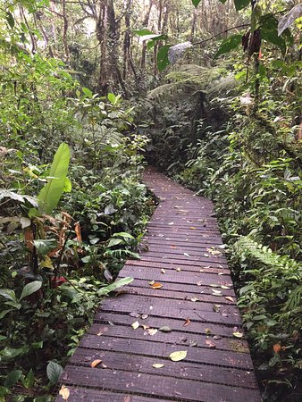 San Ramón, Costa Rica: photo5.jpg