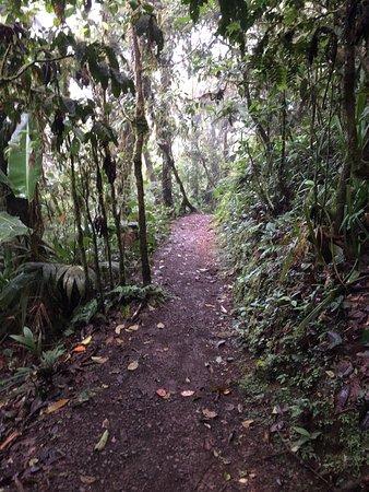 San Ramón, Costa Rica: photo7.jpg