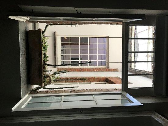El patio 77, first eco-friendly B&B in Mexico City foto